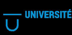 3. Logo_Université_de_Lyon.png